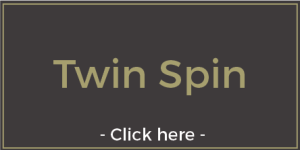 twin-spin-slots